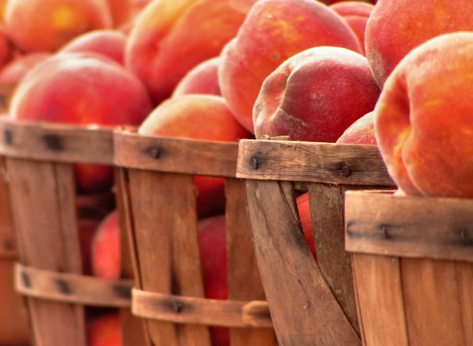 bigstock-Baskets-Of-Peaches-305152